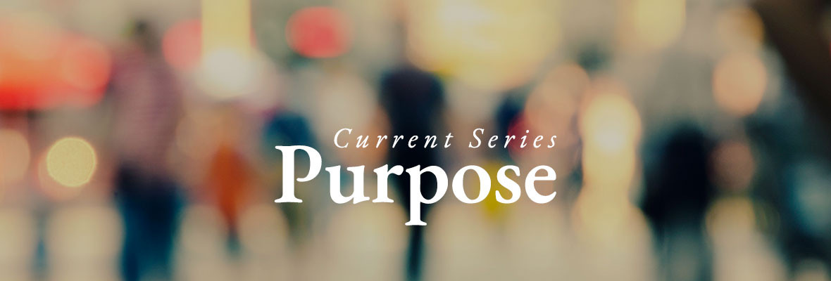 Current Series: Purpose
